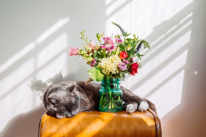 Dít is waarom je altijd een bos bloemen op tafel zou moeten hebben staan