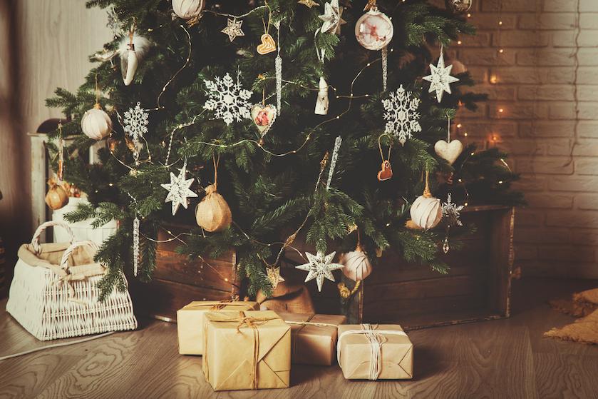 Getver: zo veel beestjes zitten er écht in je kerstboom