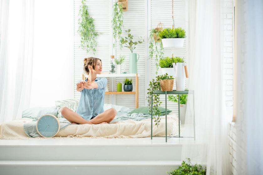Déze slaapkamerplanten helpen je aan een goede nachtrust, ja echt