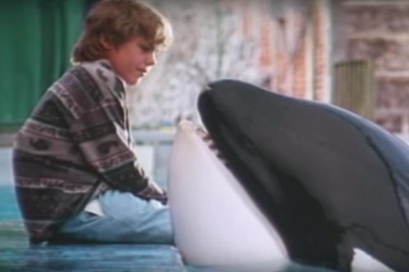 Nostalgie! 'Free Willy' staat op Netflix, dus pak de tissues er maar bij