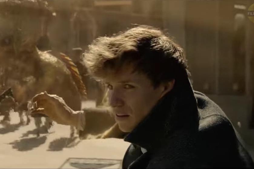 Wil je naartoe: deze bioscoop organiseert een 'Fantastic Beasts'-marathon