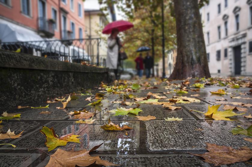 Herfst begint iets later dit jaar: eind van de week warm weer in aantocht