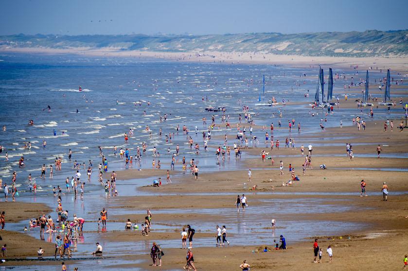 Dagje strand? Pas op: giftige pieterman zwemt óók bij Nederlandse kust