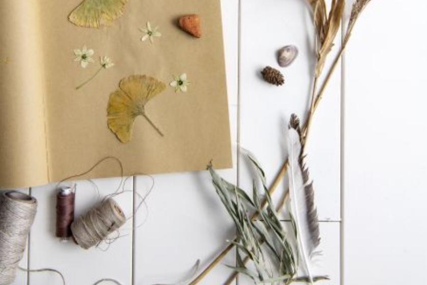 DIY: Iets moois gevonden in de natuur? Maak er pronkstukken van voor in huis