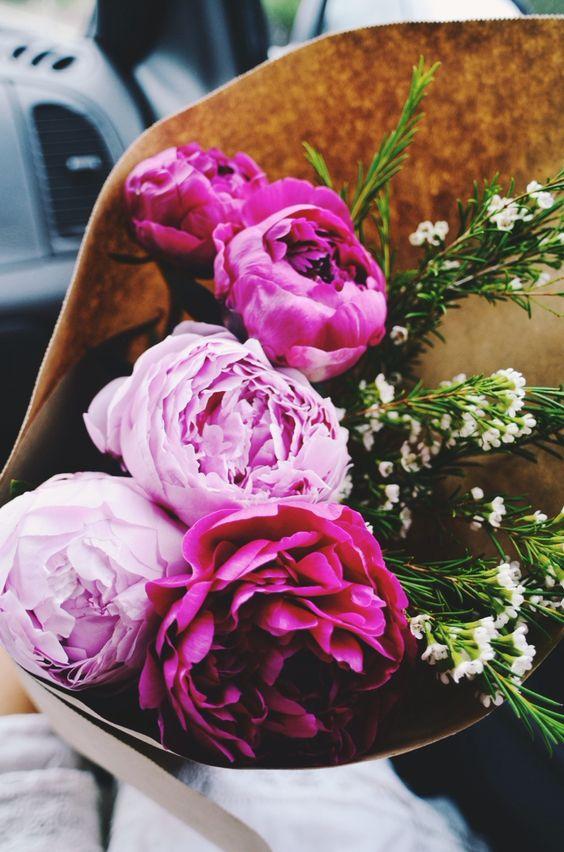 Zo open je een roos, voor prachtige bloemen!