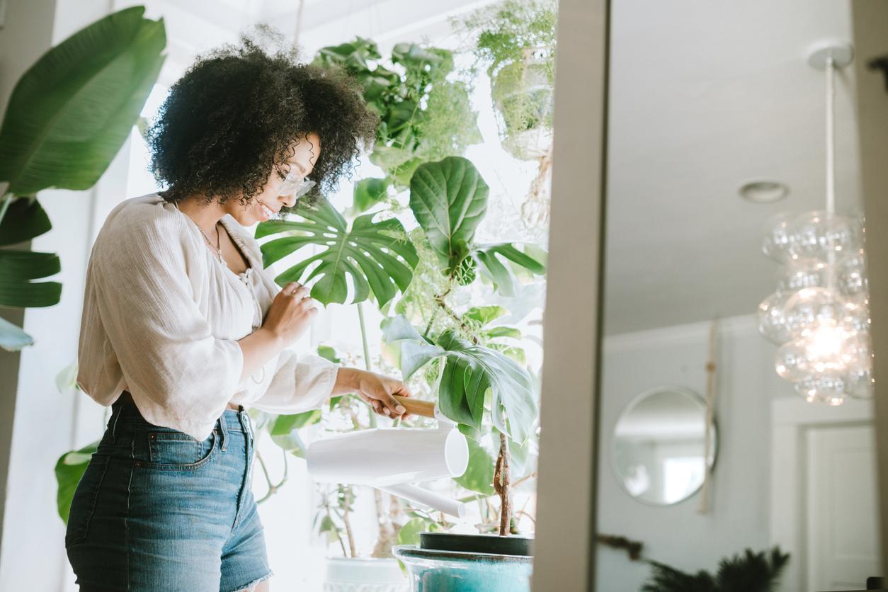 Met deze trucs geef je je planten nooit meer teveel water (en blijven ze dus leven)