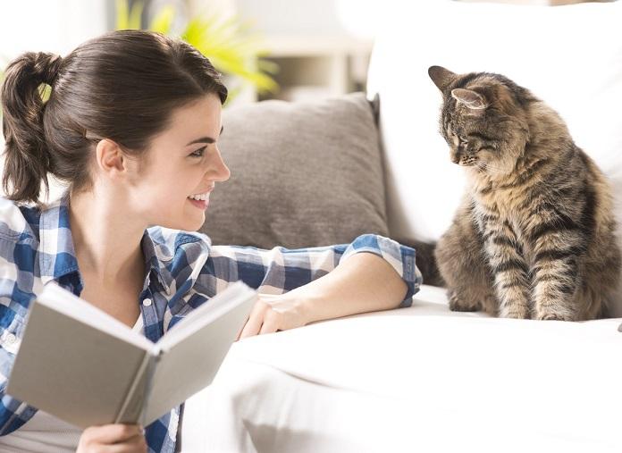 Meteen proberen: zó zit je kat (nog) lekkerder in z'n vacht!