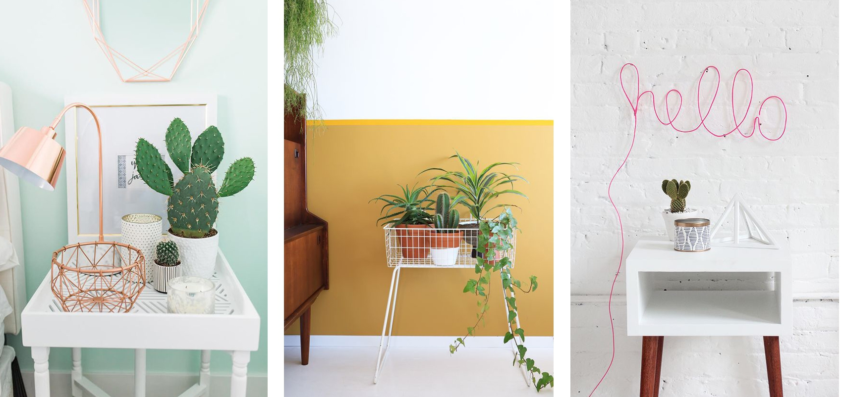 Wooninspiratie: cactus corner