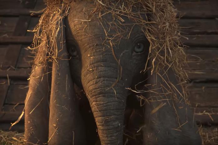 Dít is de eerste magisch mooie teaser van Disney's 'Dumbo' live action-remake