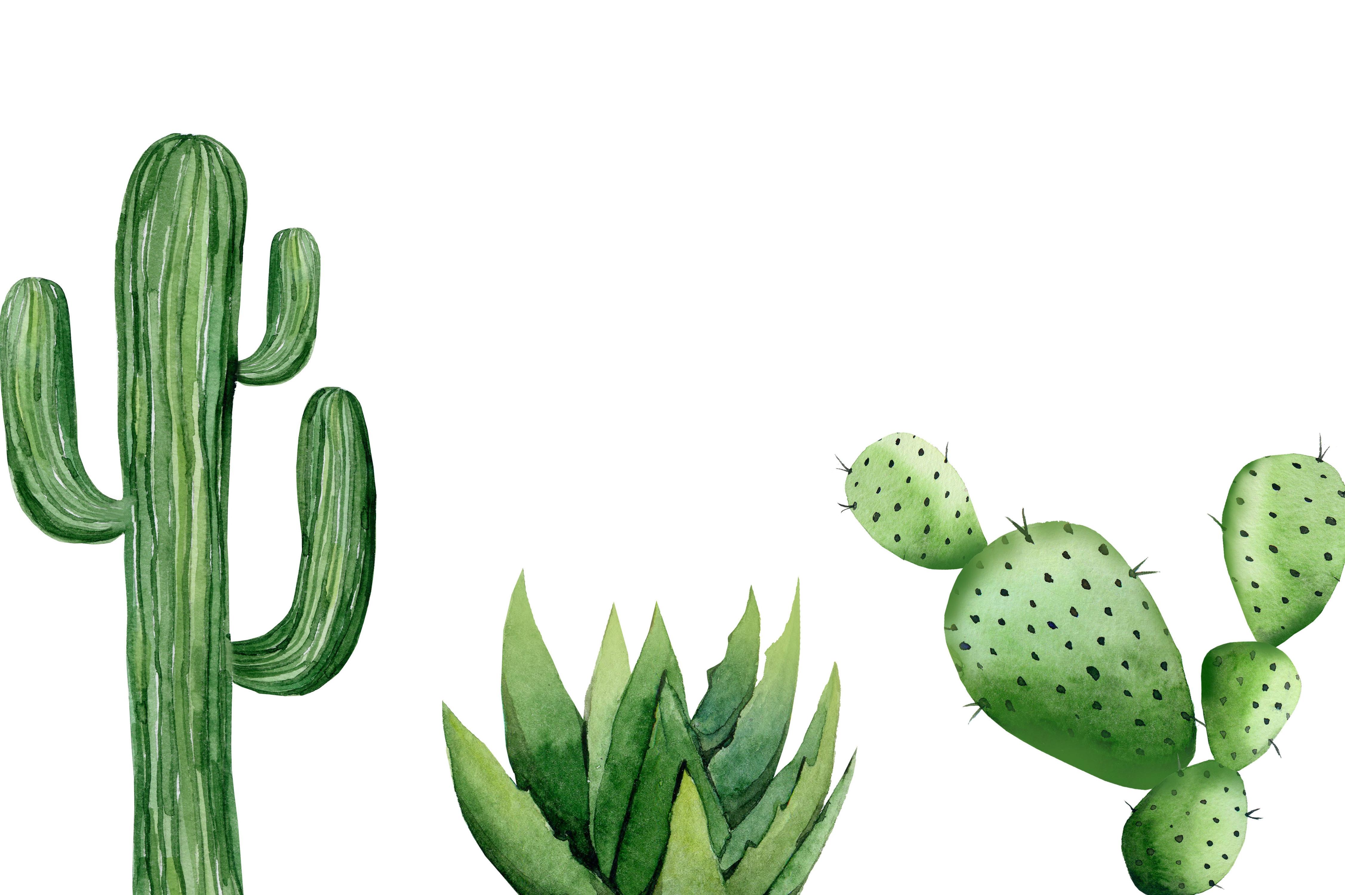 Woontrend: de micro-cactus