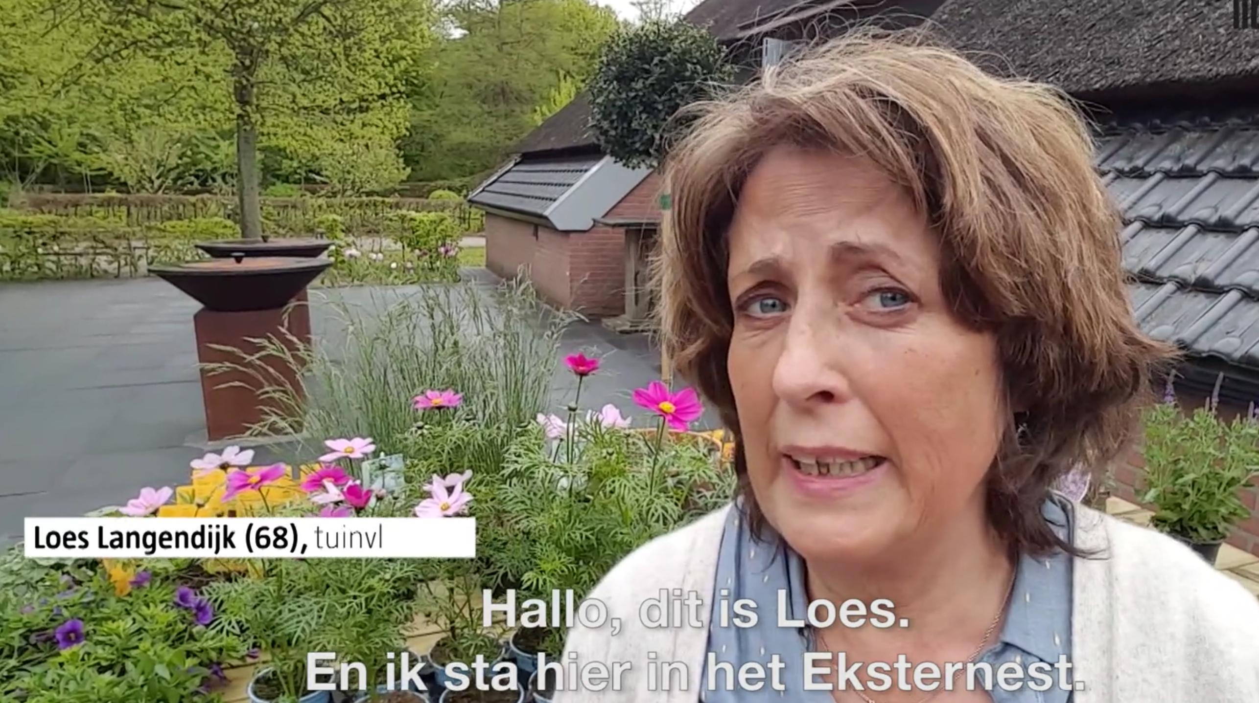 Hoe beplant je bloembakken? Tuinvlogger Loes legt uit!