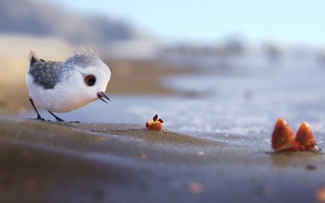 ZIEN: Pixar zwiert de superschattige kortfilm 'Piper' online