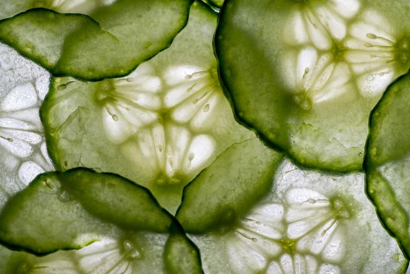 Elke dag een komkommer? Dit is waarom dat goed voor je is