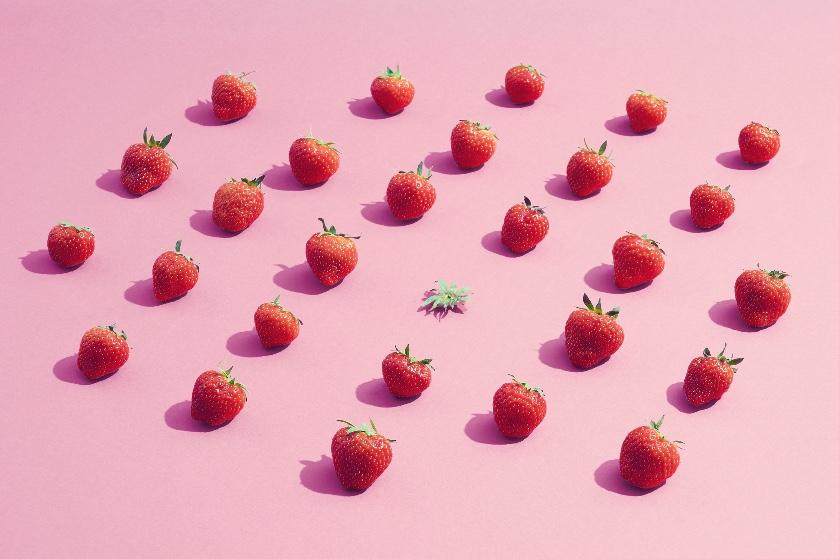 Volgend jaar weer verse aardbeien in de tuin? Begin dan nu al met planten