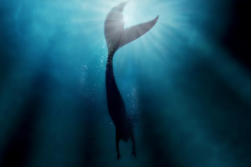Goed gecast? Déze Hollywoodster speelt zeeheks Ursula in 'The Little Mermaid'-remake