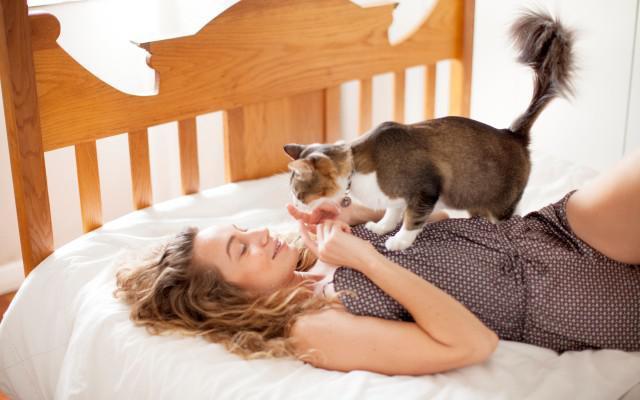 11 redenen waarom een kat beter is dan een lief