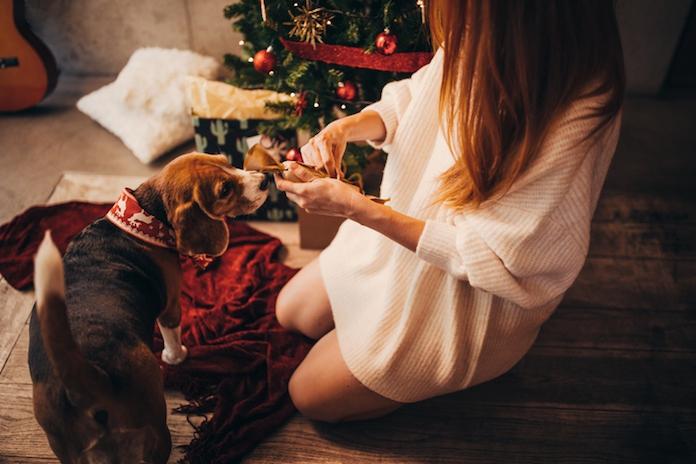 Fouter wordt het niet: matching kersttruien voor jou en je huisdier