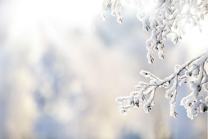 Sneeuwalarm: komende dagen is er weer kans op winterse buien