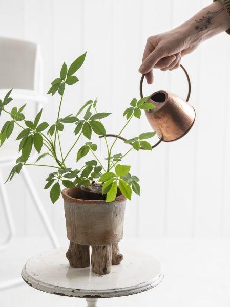 DIY plantenpot op pootjes