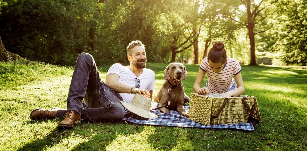 In Engeland vindt deze zomer een hondenfestival plaats