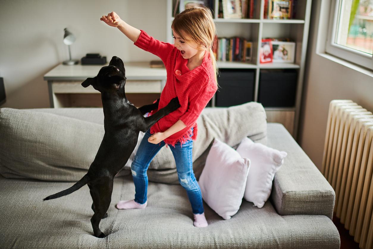 Aha: dit zijn de beste hondenrassen voor kinderen