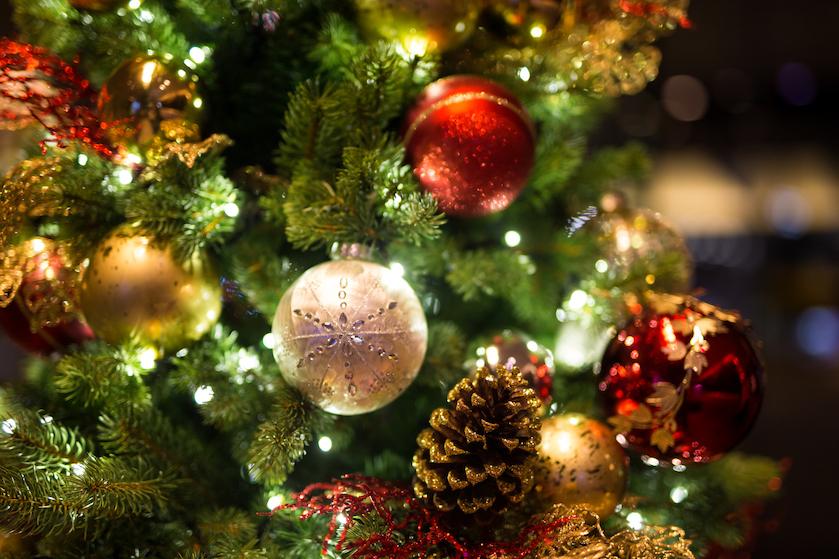 Heftige beelden: zo snel kan een droge kerstboom in brand vliegen