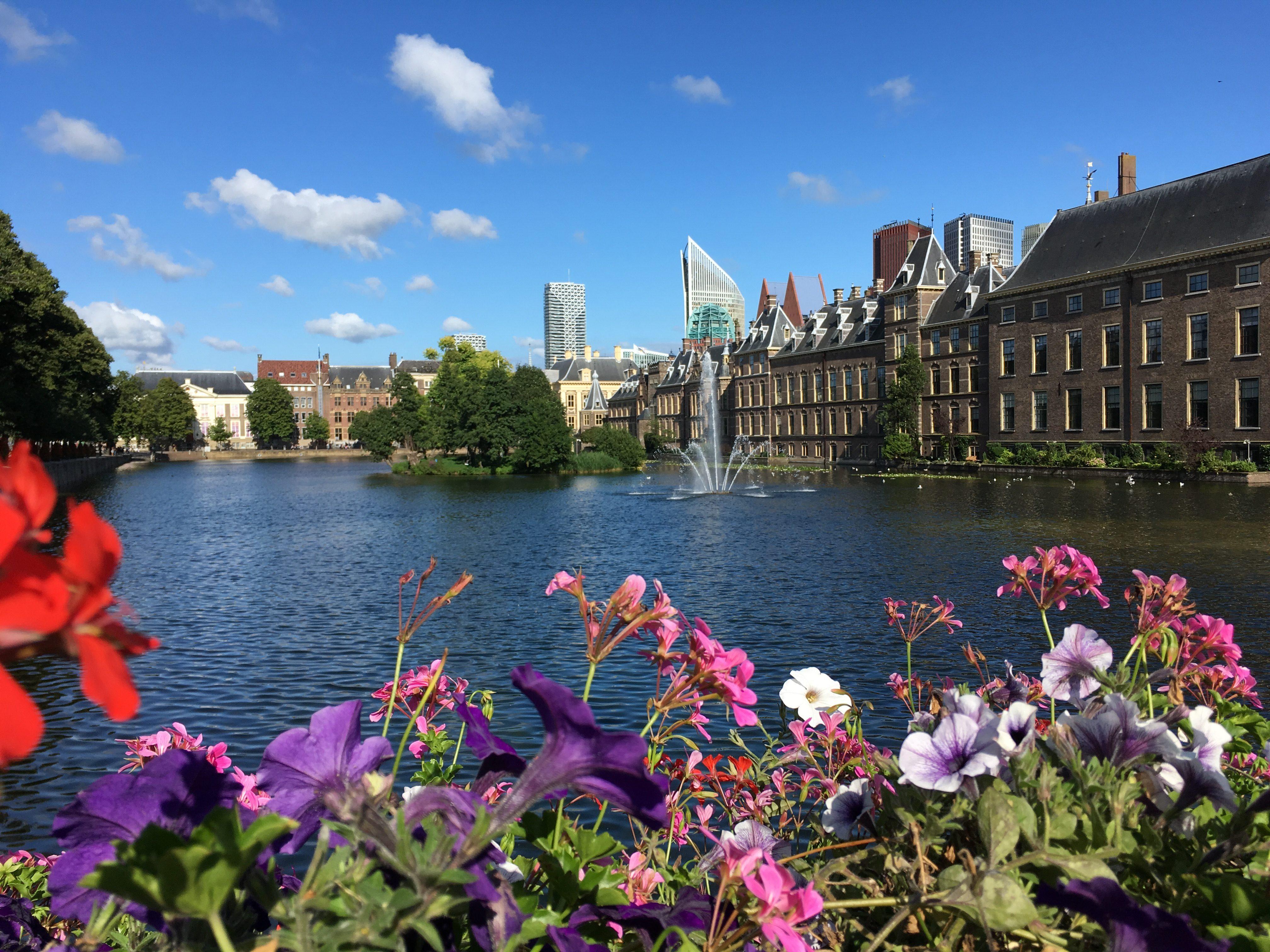 Den Haag foto Denise