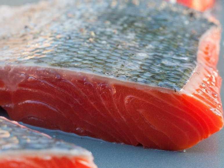 fresh-raw-salmon