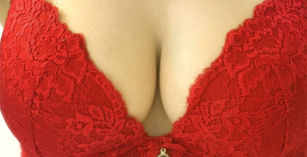 De perfecte borsten