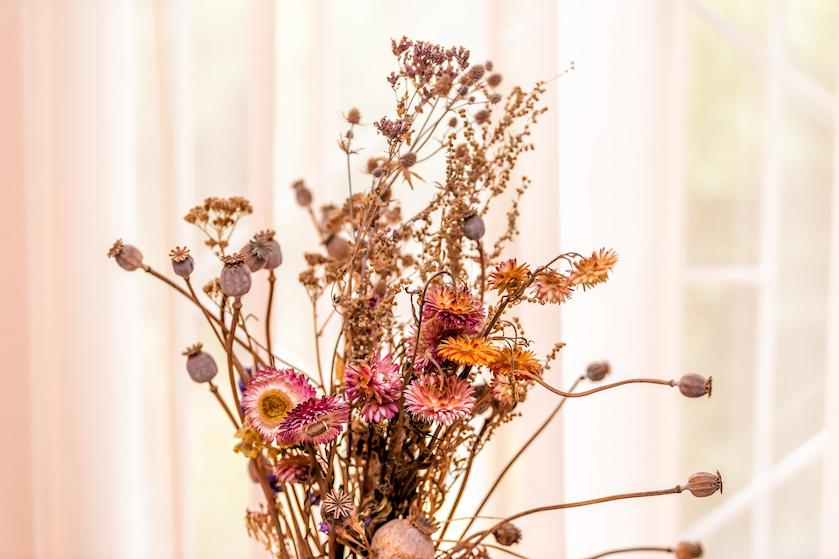 Nóg langer genieten: dankzij deze tip blijven je droogbloemen het langst mooi