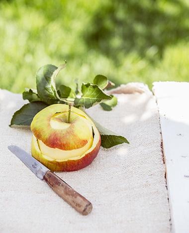Hoe snijd je een appel? Nou, zo!