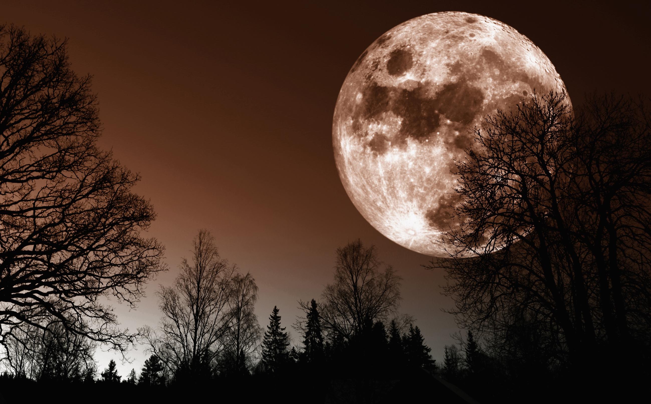 Galaxy lovers opgelet: maandag spot je de grootste maan van deze eeuw!
