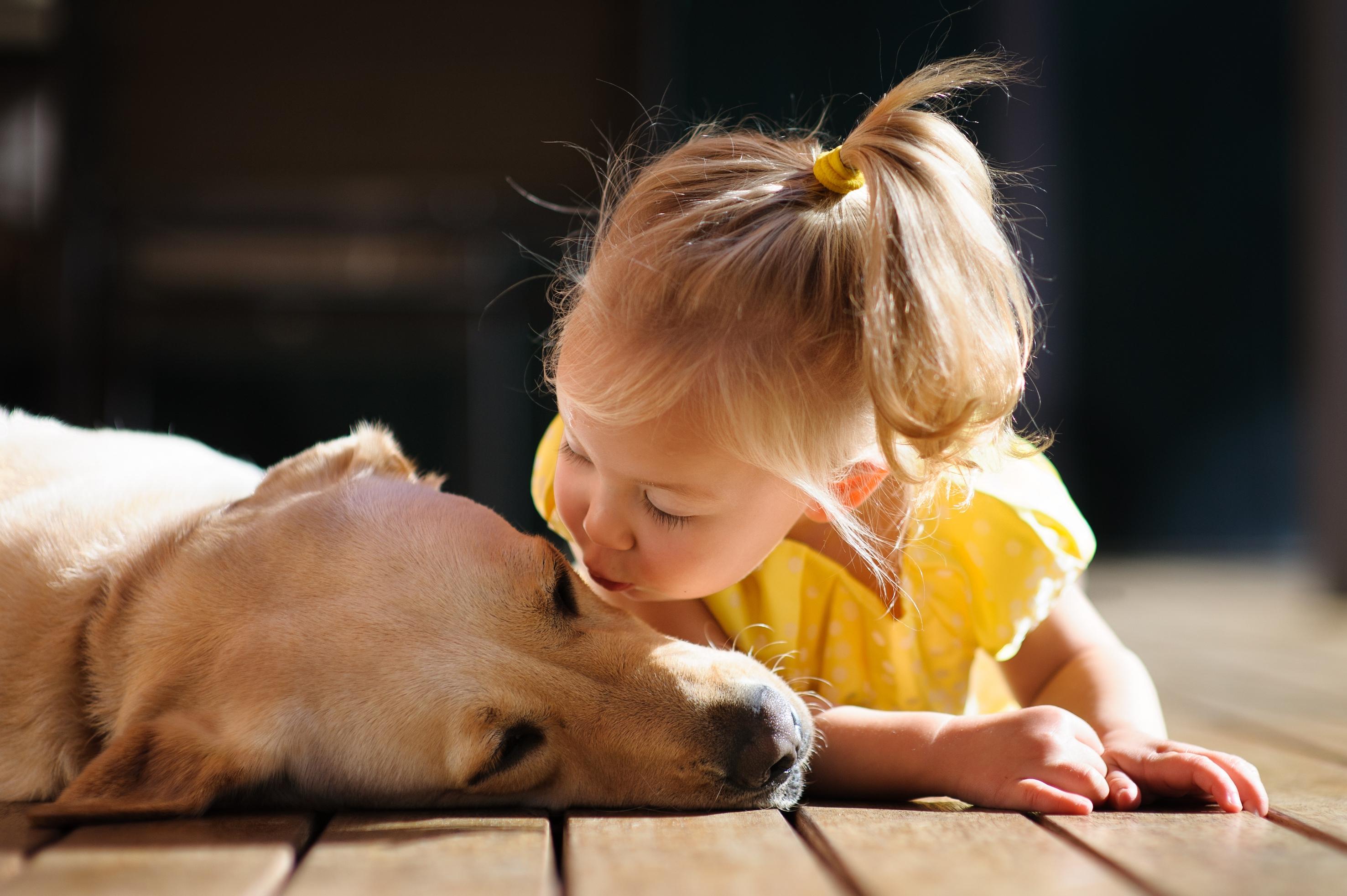 Bewezen: kinderen verkiezen huisdier boven hun broers en zussen