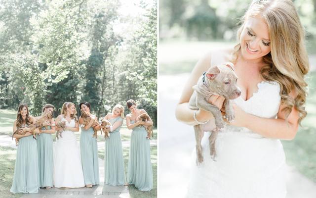 CUTE: geen bloemen op dit huwelijksfeest, wel… puppy's