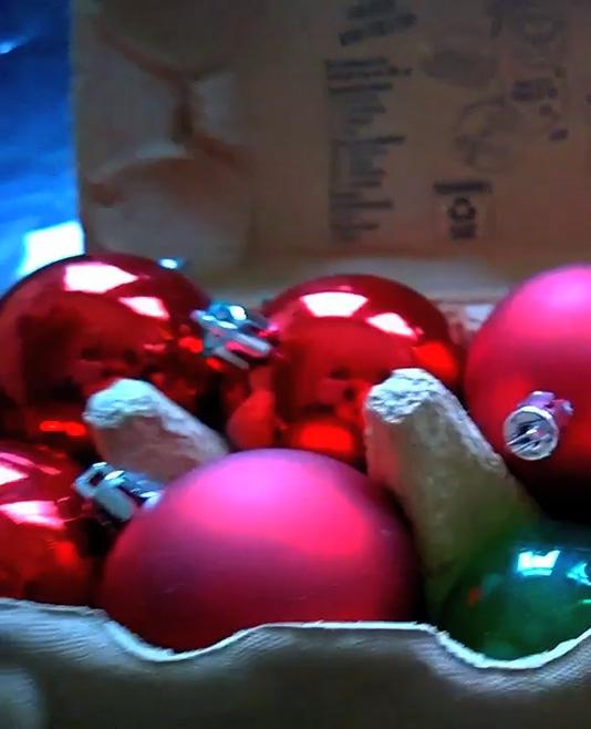 Video Sue: kerstboom opruimen