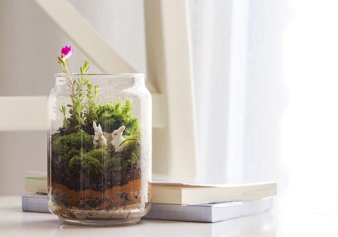 Zien: zó maak je zelf een decoratief terrarium