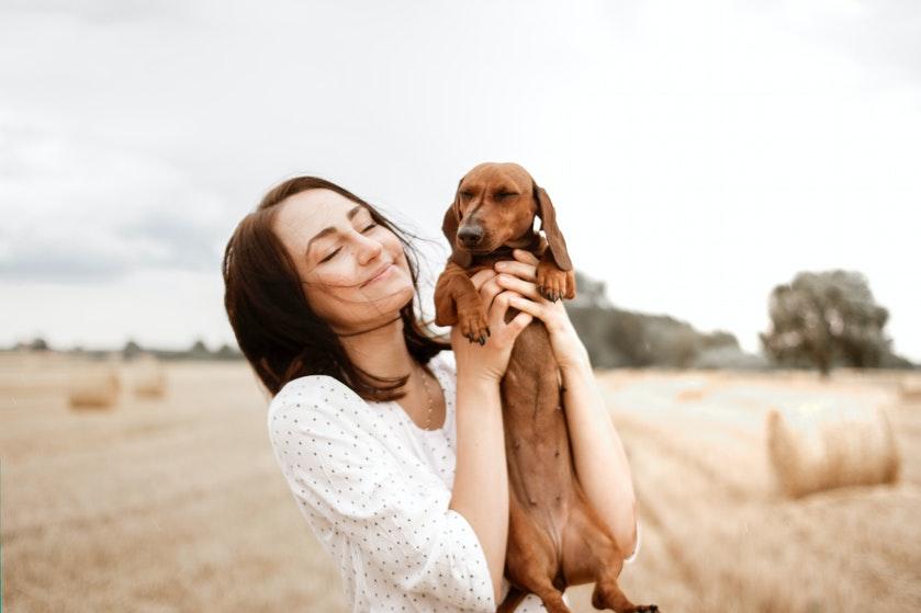 Hondenbezitters, opgelet: dit kun je beter níet tegen je hond zeggen