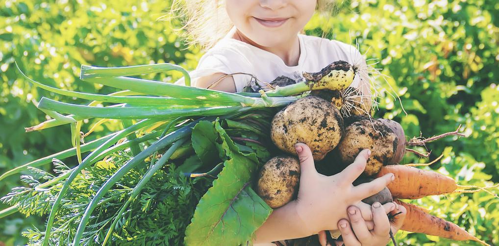 Je kinderen vegan opvoeden, hoe gezond is dat?