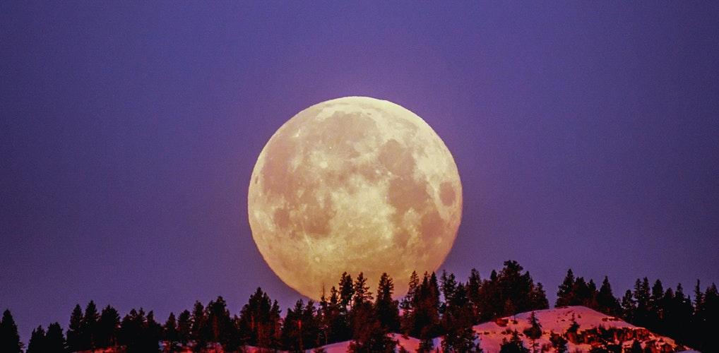 De volle maan van afgelopen weekend zorgt massaal voor zin in… opruimen