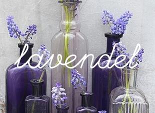 5 leuke tips met lavendel
