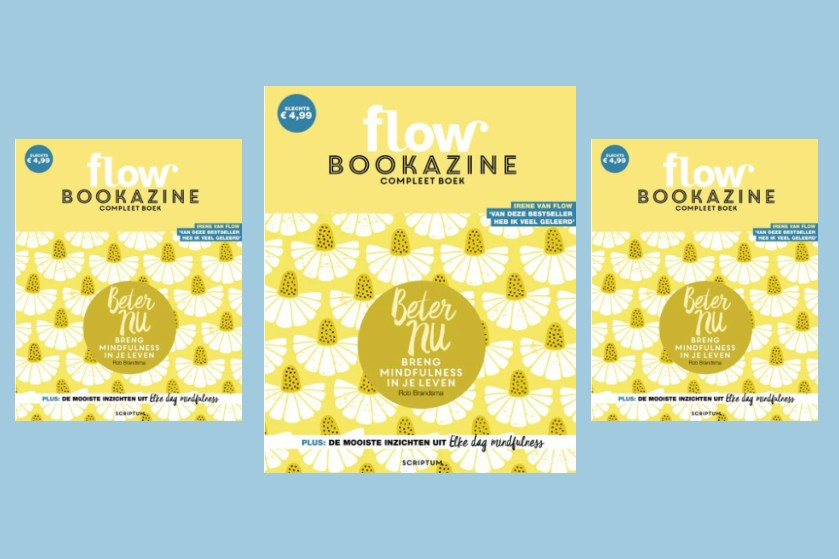 WIN WIN WIN: 10x self-help bookazine van Flow