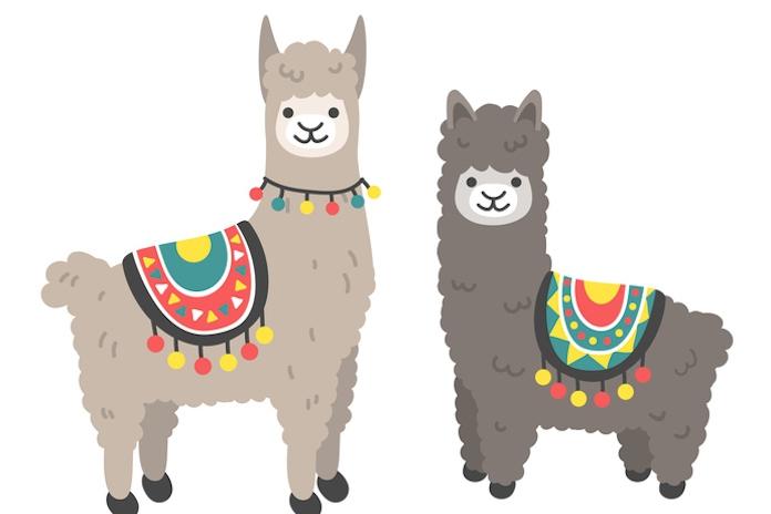 Bye bye unicorn! De alpaca-floatie is het nieuwe hebbeding en hij kost geen drol