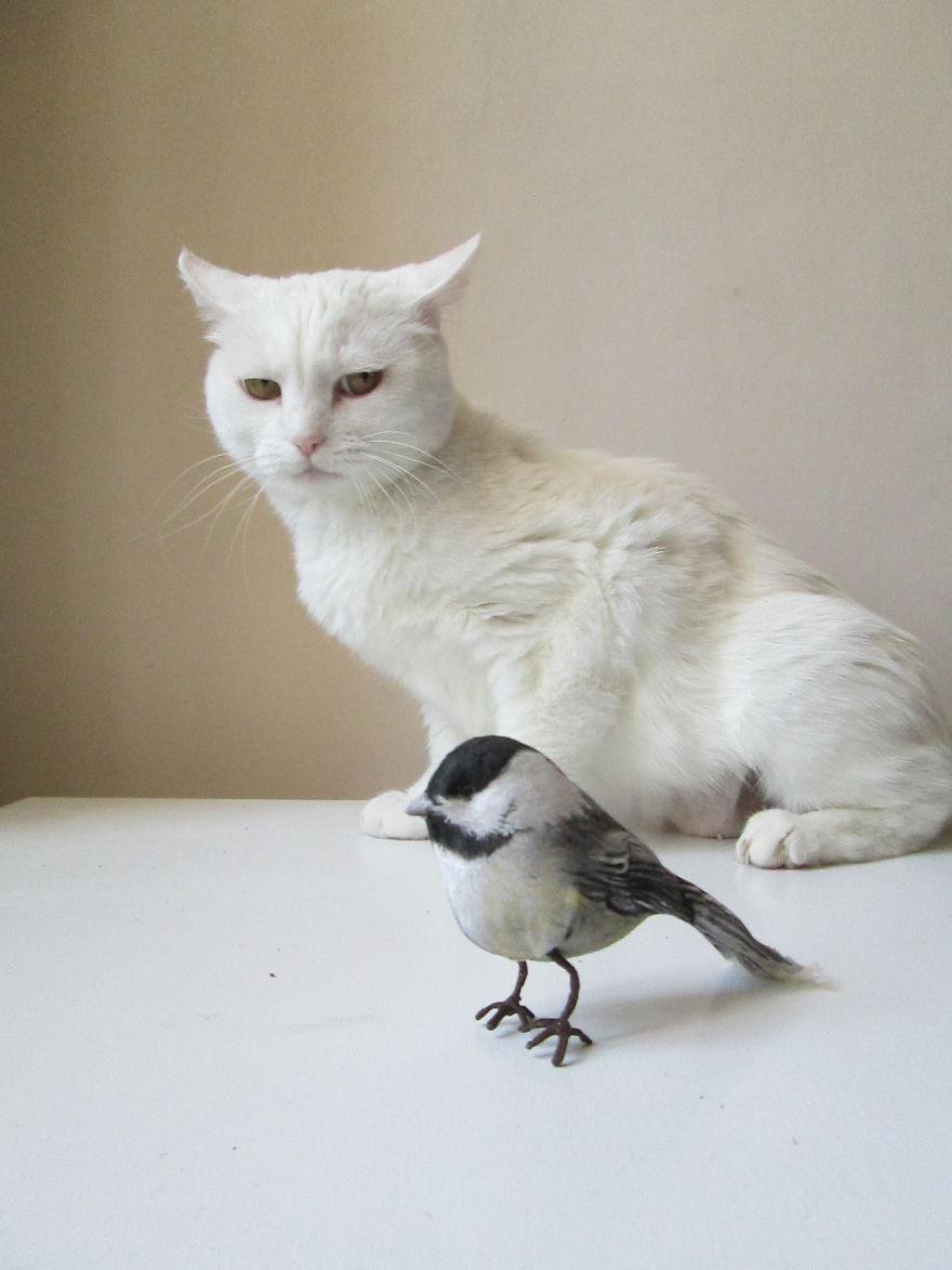 uccellino_in_stoffa_come_realizzare_fare_un_uccellino_in_stoffa-57b39c687fc33__880