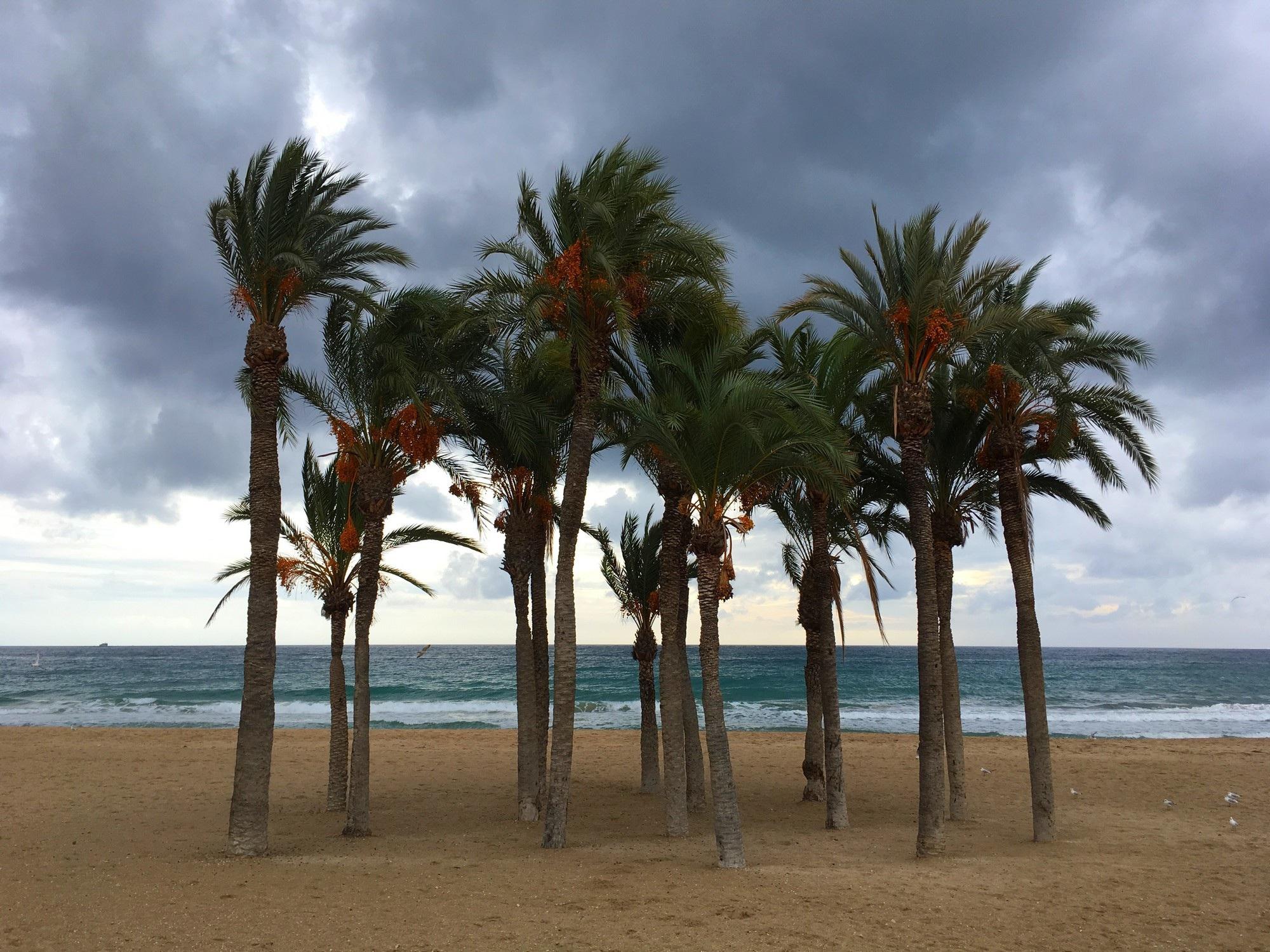 Blog Denise: Een dag in mijn eentje naar Spanje