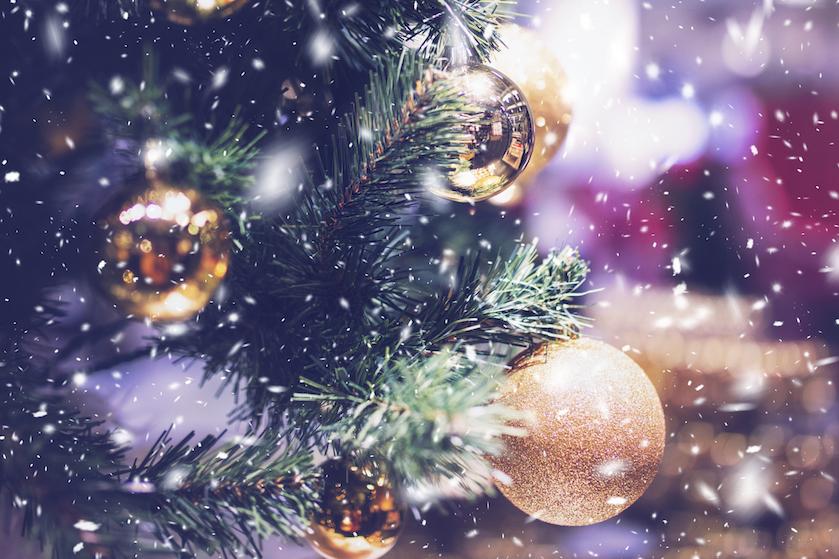 Dít is volgens experts het beste moment om een kerstboom te kopen