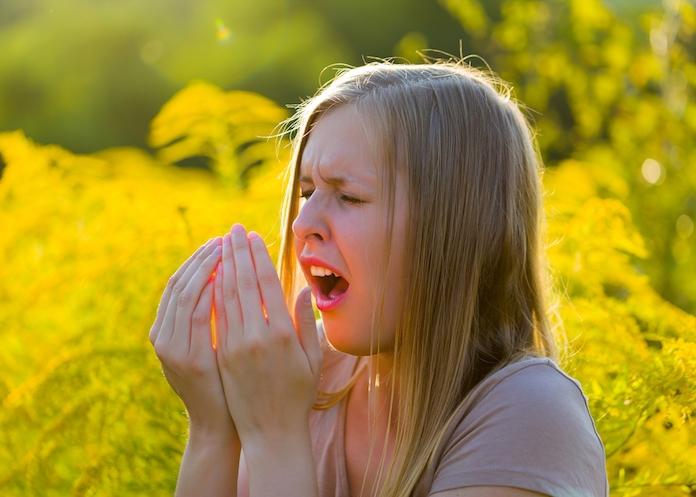 Yes please: is het einde van vervelende allergieën nabij?