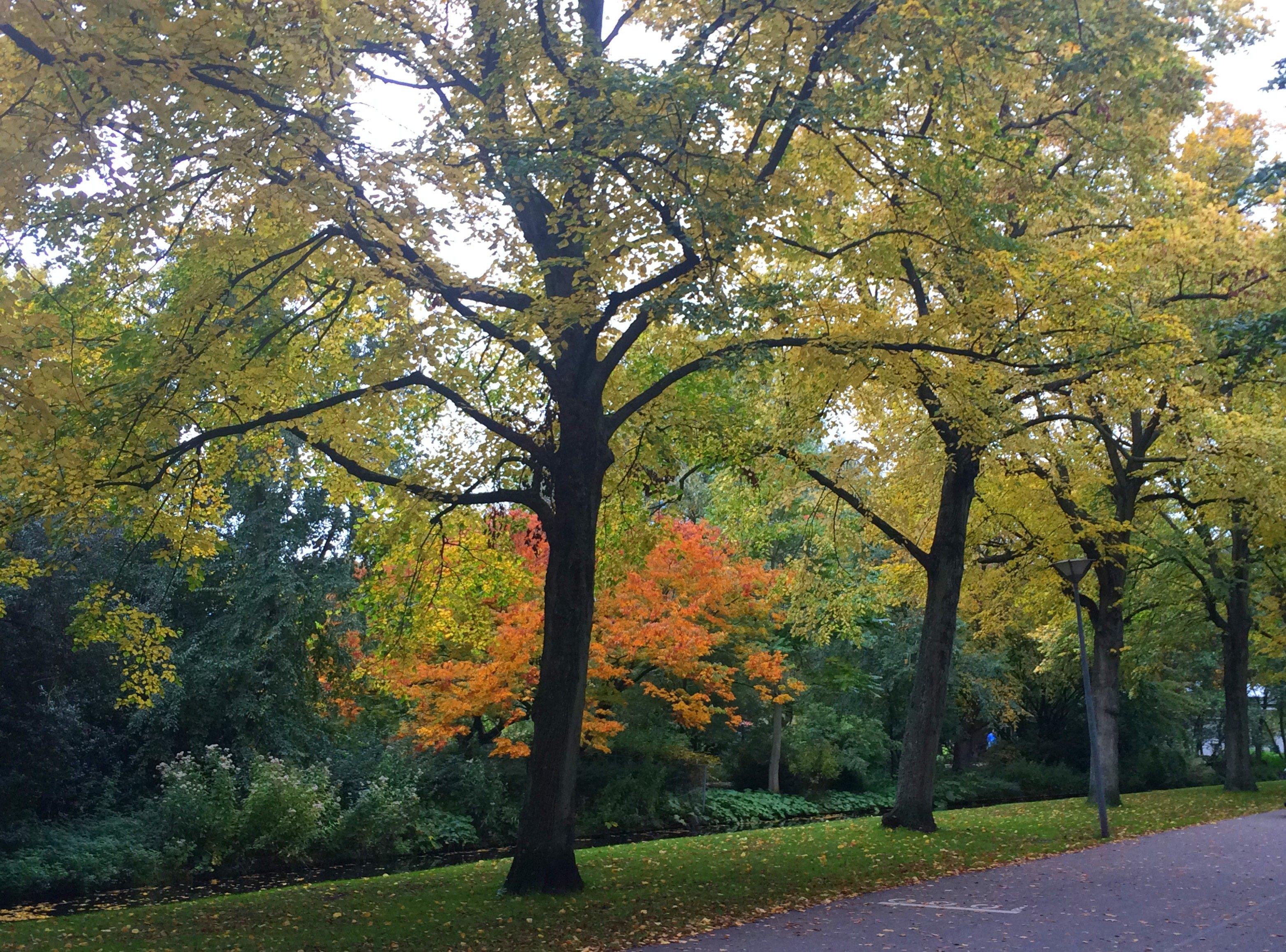 Blog Denise: Leuke ideeën voor dagjes weg in de herfstvakantie