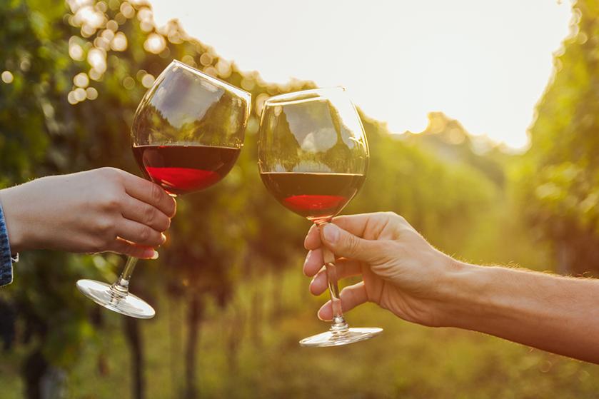 Wijnliefhebbers opgelet! Met deze droomvacature verdien je geld met jouw favo bezigheid