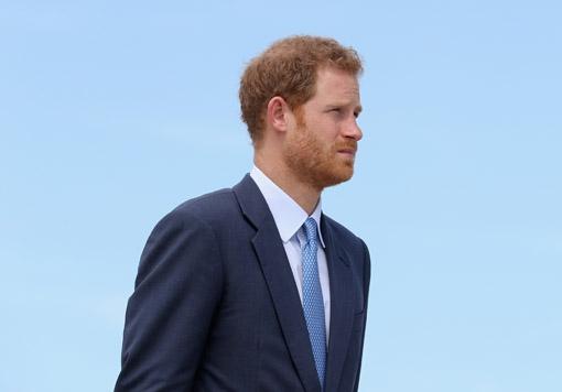 WAT?! Er verschijnt binnenkort een boek over de 'kroonjuwelen' van prins Harry