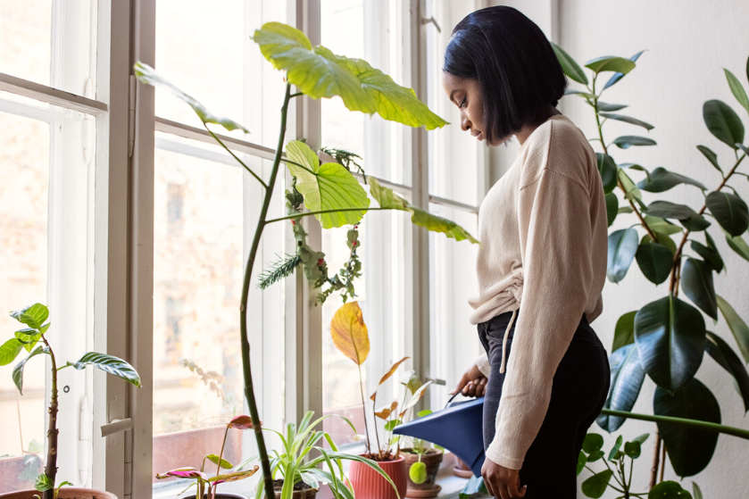Verwarming aan tijdens koude herfstdagen? Zó hou je je kamerplanten in leven